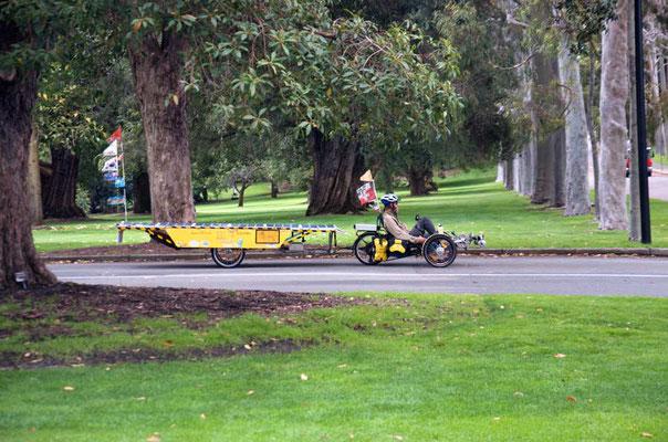AU: Perth. Kings Park between the trees (Photo: Tom Hogarth)