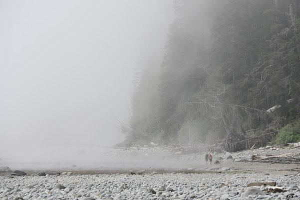 CA0110 WCT Nebelküste