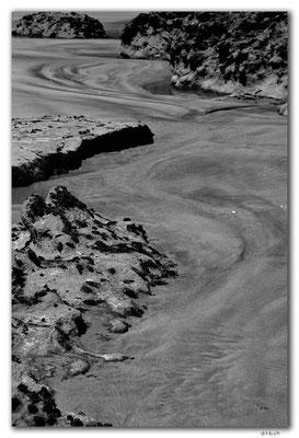 NZ0608.Farewell Spit. Fossil Point.Rocks
