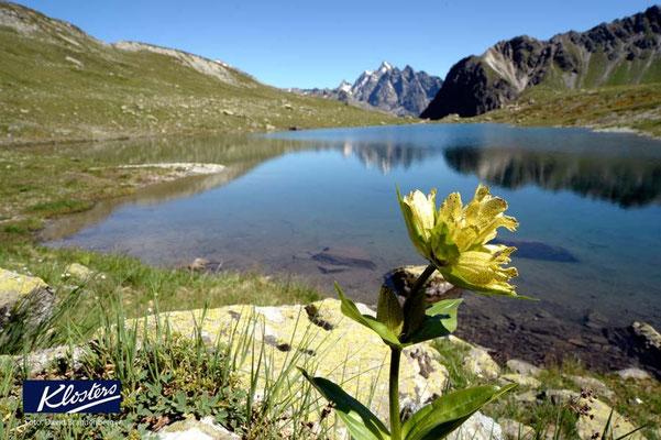 P0147.Novaier Seeli.Klosters