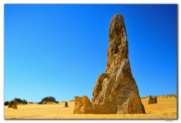 AU0587.Nambung N.P.Pinnacles