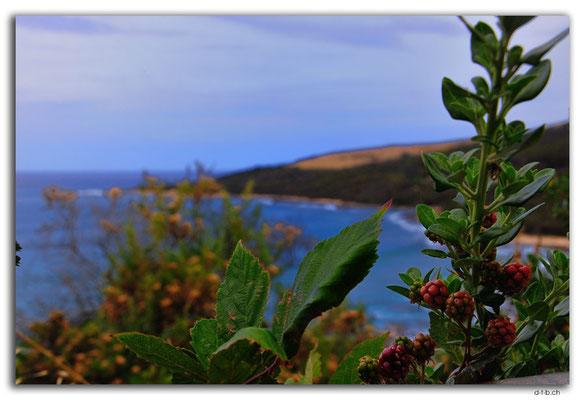 AU1201.Great Ocean Road