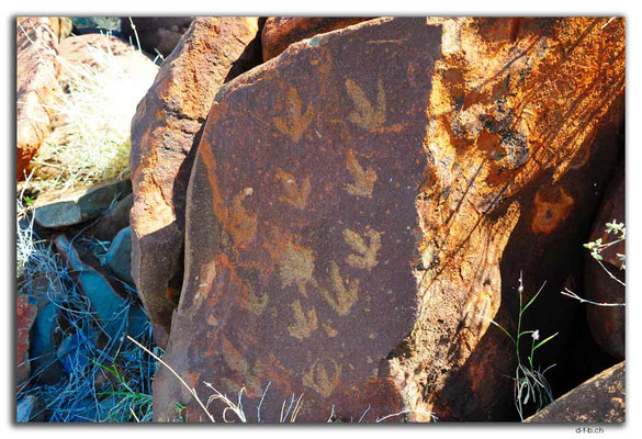 AU0322.Karratha.Rock Art