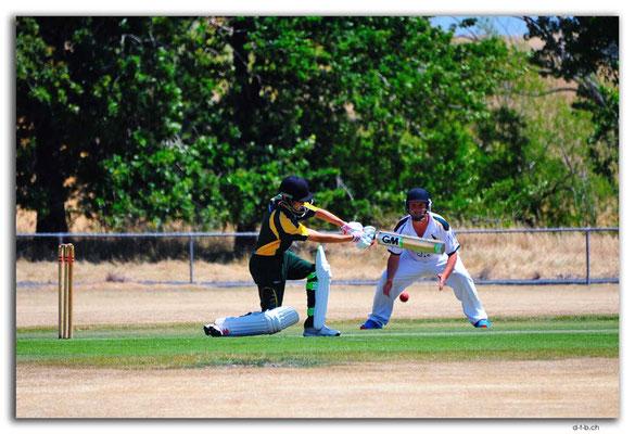 NZ0716.Scargil Domain.Cricket