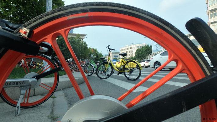 CN.Mietvelos in Tianjin