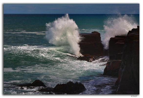 NZ0917.Curio Bay,Wave