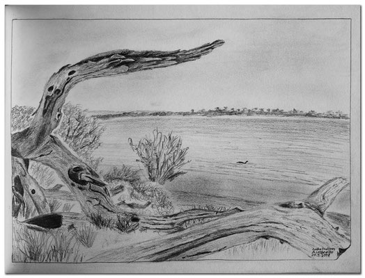 195Skizze.Lake Indoon.Australia