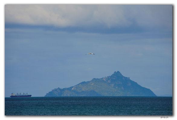 NZ0213.Taranga Island