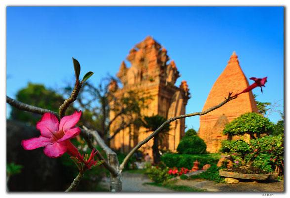 VN0268.Nha Trang.Thap Ba Pongar