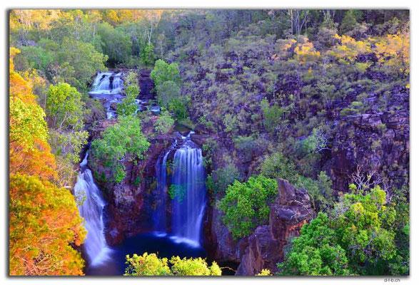 AU0081.Litchfield N.P. Florence Falls