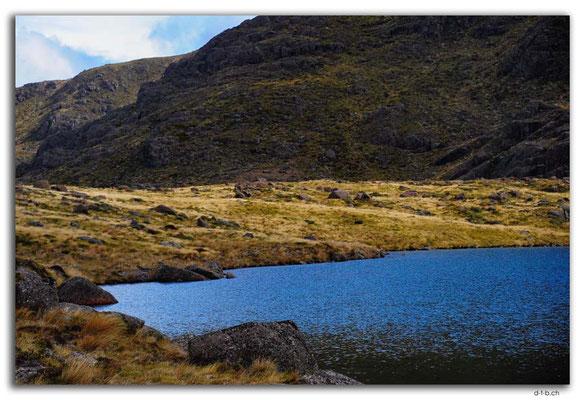 NZ0500.Kahurangi N.P.Iron Lake