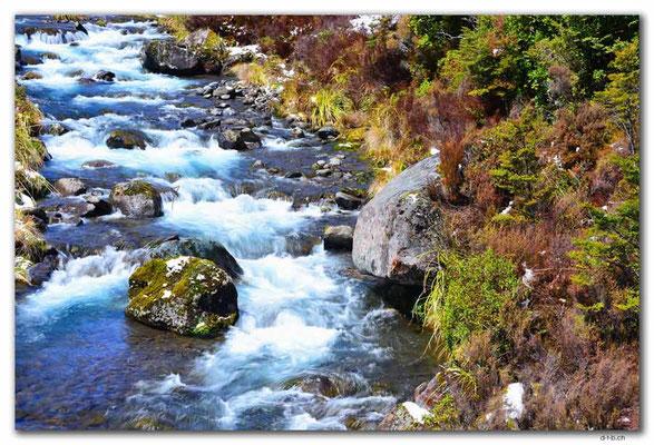 NZ0313.Tongariro N.P.Whakapapanui Stream