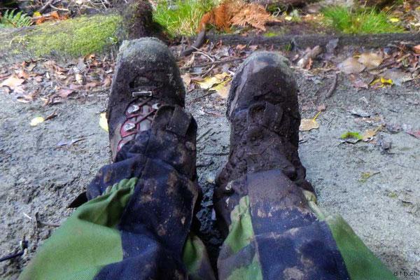 Neuseeland.Stewart Island,Rakiura Track, Muddy Boots