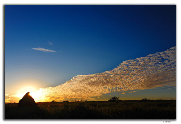 AU0369.Sonnenuntergang bei Termitenbau