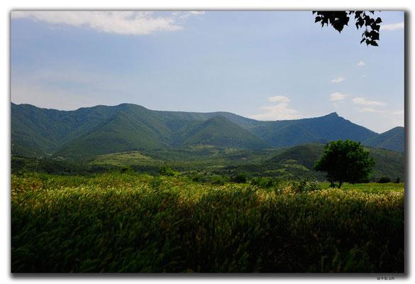 GE071.Khashuri bewaldete Hügel