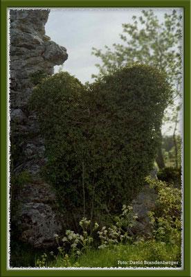 A0174.Herz am Rauk.Gotland.SE