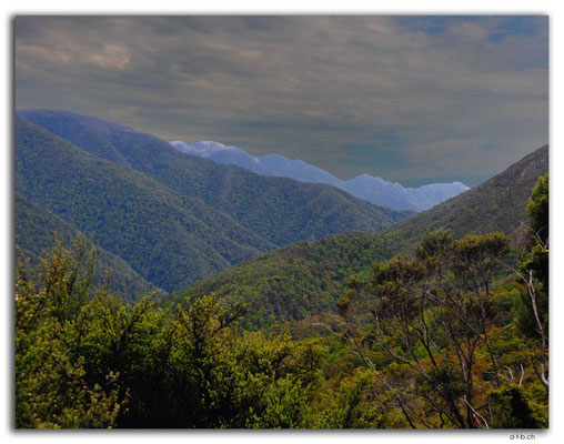 NZ0583.Anatoki Track.Anatoki Range