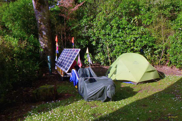 NZ: Solatrike in Pelorus Bridge Camping