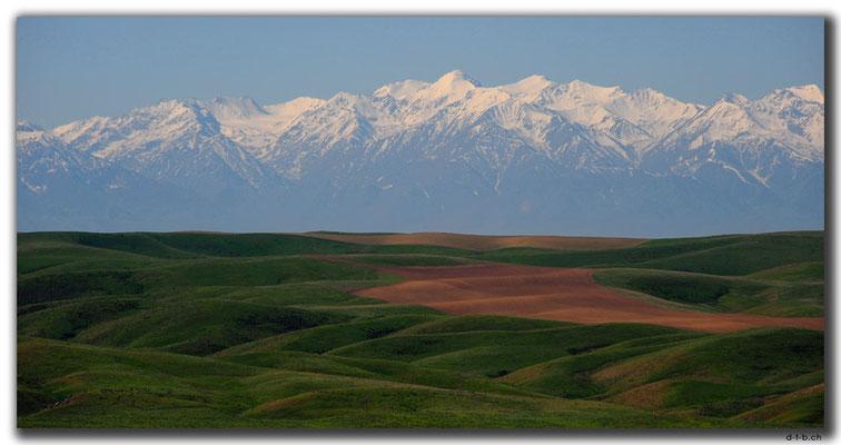 KZ0097.Kyrgyz Ala-Too