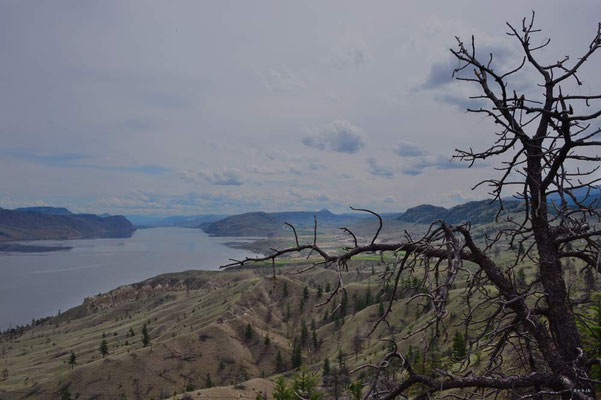 CA0190 Kamloops Lake