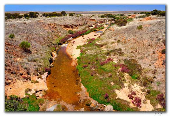 AU1036.Eyre Peninsula.Salty Creek