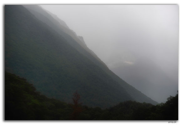 NZ0671.Nelson Lakes N.P.Travers Range in fog