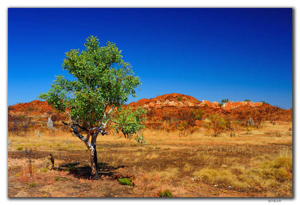 AU0207.Halls Creek.China Wall