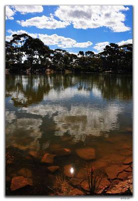 AU0882.Bromus Dam