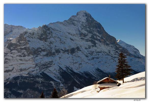 GW0031.Eiger mit Alphütte