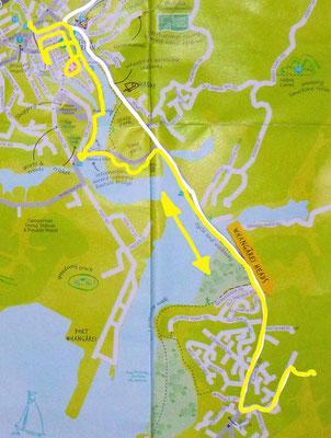 Ausflug in Whangarei 1.Tag