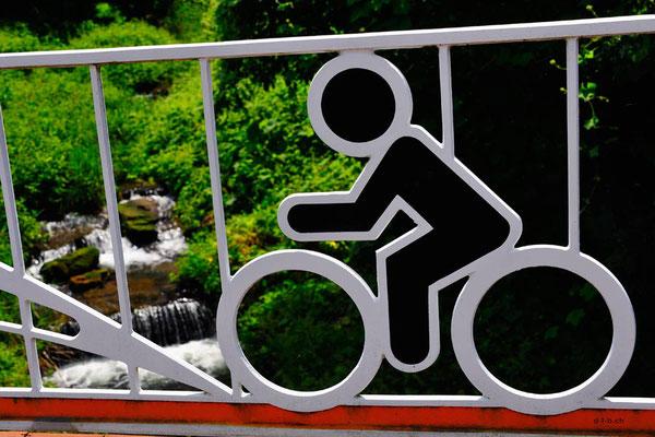 KR: Chungju, Geländerverzierung mit Velo