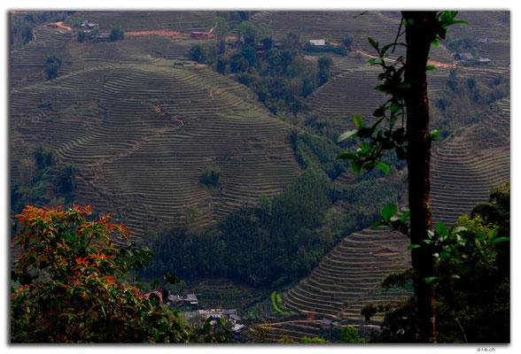VN0058.Sapa.Muong Hoa Valley