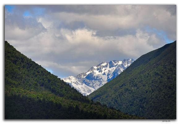 NZ0681.Nelson Lakes N.P.Mt.Ella