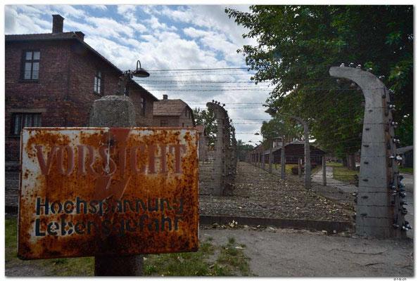 PL027.Auschwitz.Schild und Zaun