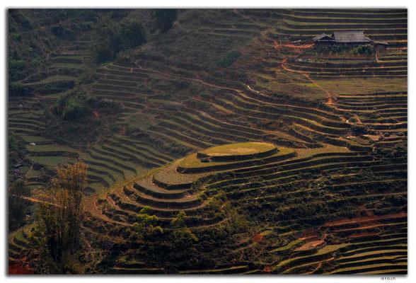 VN0061.Sapa.Muong Hoa Valley