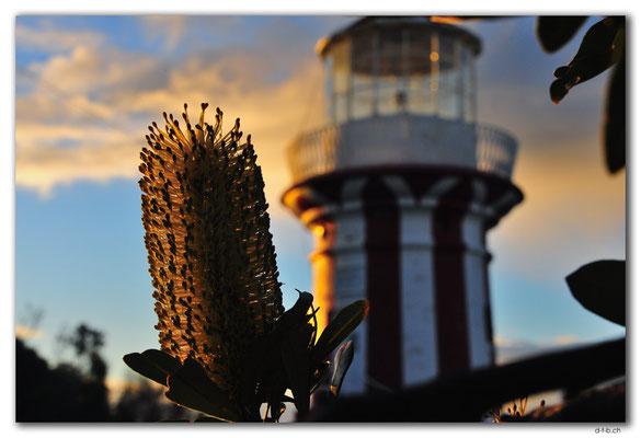 AU1650.Sydney.Hornby Lighthouse