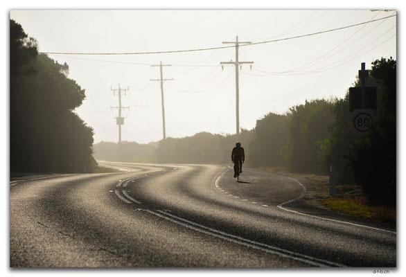 AU1209.Great Ocean Road.Velofahrer