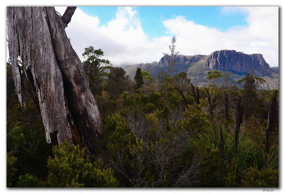 AU1377.Overland Track.Cathedral Mountain