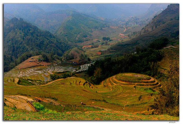 VN0052.Sapa.Muong Hoa Valley