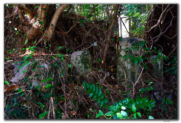 JP0008.Izuhara.Kaiganji.Friedhof