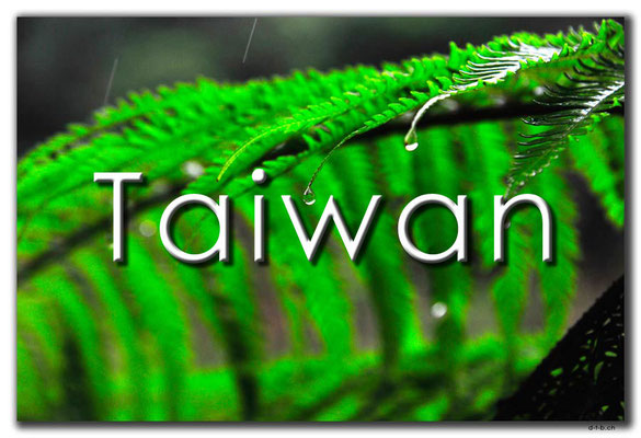 Fotogalerie Taiwan / Photogallery Taiwan