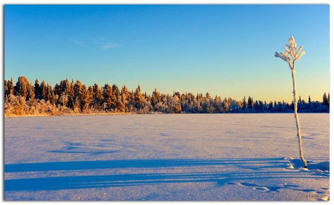SE0081.Lapland Wilderness.Kappirasjärvi