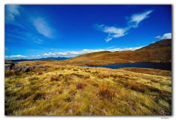 NZ0496.Kahurangi N.P.Little Sylvester Lake