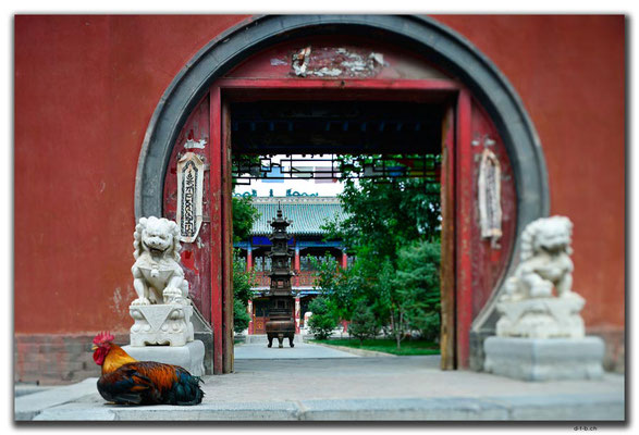CN0295.Hohhot. Dazhao Kloster