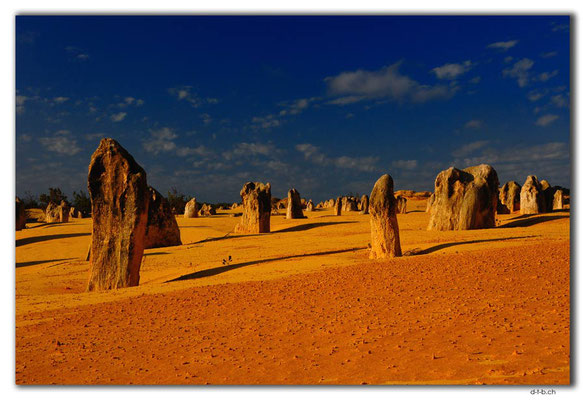AU0599.Nambung N.P.Pinnacles
