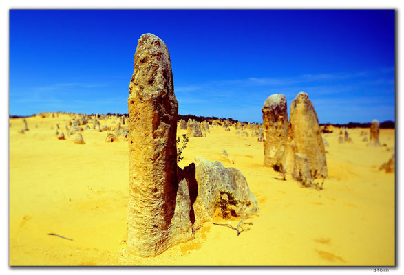 AU0585.Nambung N.P.Pinnacles