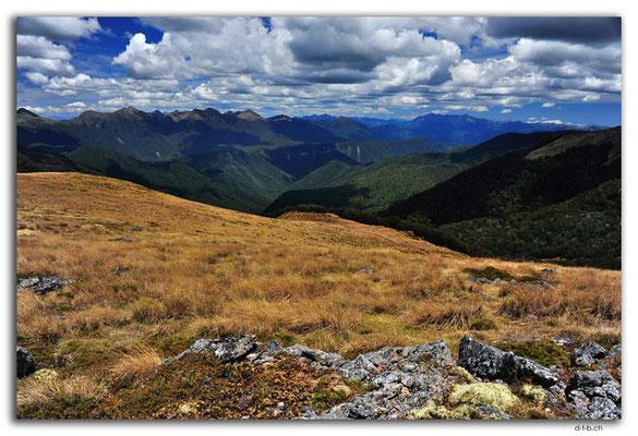 NZ0518.Kahurangi N.P.Wharepapa Arthur Range