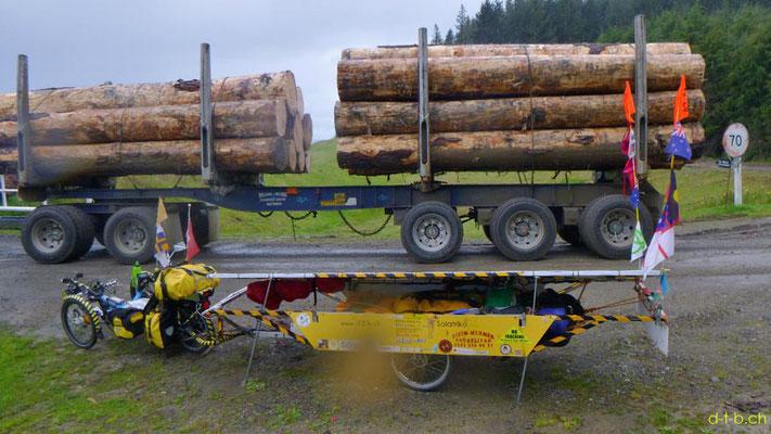 NZ: Solatrike und Holztransporter