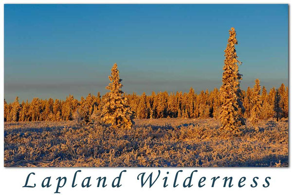 SE0073.Lapland Wilderness