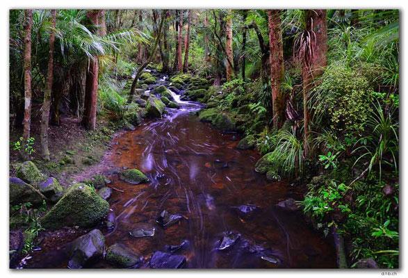 NZ0183.Whangarei.AH Reed Park.Waikoromiko Stream
